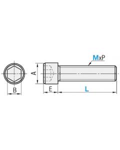 "Socket Head Cap Screws | Stainless Steel 18-8 | Thread Diameter: #2-56 x Length: 11/64"" (Carton Size: 100) Coarse Thread"